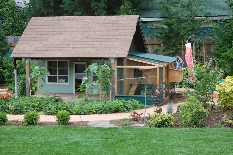 fancy chicken coops are great for people with a neat backyard